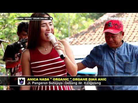 Tetep Demen -  Debby Farellia -  Anica Nada Live Jatibarang Indramayu