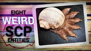 The WEIRDEST SCP Entities of all Time (Top SCP's)