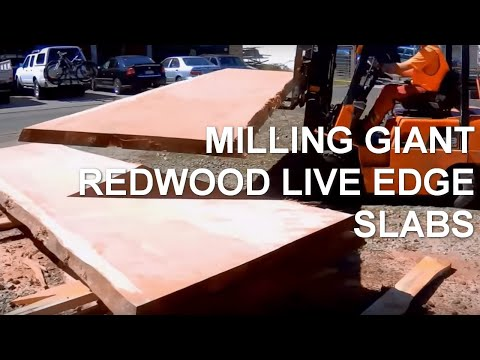 Giant Dedicated Wide Slabber cutting Redwood