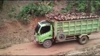 Kecelakaan tragis/maut.sebuah truk muatan kelapa sawit.
