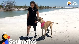 World's Most Inspiring Friendship Proves Love Always Wins | The Dodo Soulmates