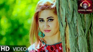 Dawood Negah - Maida Maida OFFICIAL VIDEO