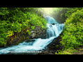 8 HOURS Shamanic Meditation Music with Healing Sounds for Positive Thinking, Stress Relief, Anxiety