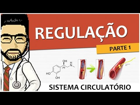 mr06-sistema-circulatrio-regulao-parte-1.html