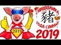 Символ 2019 года Свинья символика образа Жёлтой Земляной Свиньи mp3