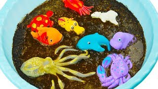 Learn Colors With Wild Animals under the Mud Toys For Kids