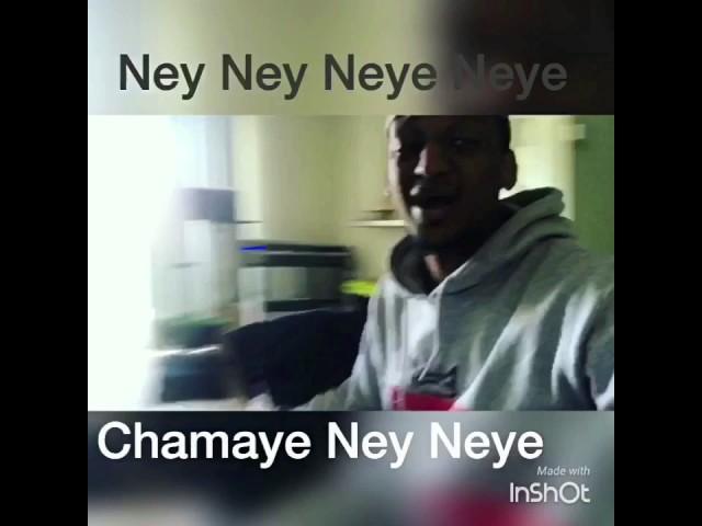 Funny Habesha Videos ( Chamaye Ney Neye )