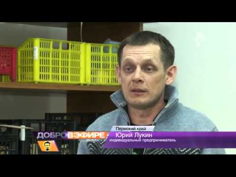 Как гаражный бизнес помогает россиянам выживать в условиях кризиса