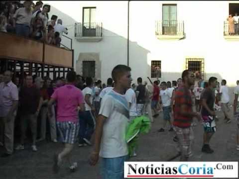 Cogida en la Plaza de la Catedral San Juan Coria 2011