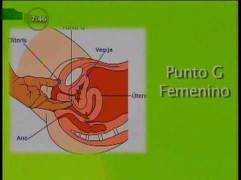 Conozca los Puntos sexuales en la mujer y el hombre
