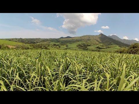 Nayarit Paraíso del Pacífico /// Xalisco