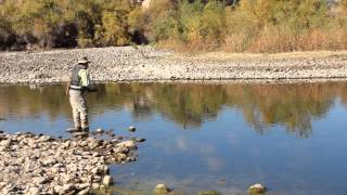 Fly Fishing the Salt River Arizona for Trout