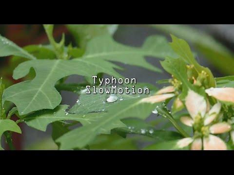 【スローモーション】台風11号の影響 Rain  Typhoon Slowmotion