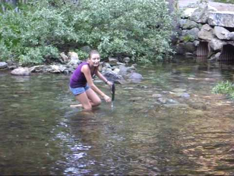 Yosemite Creek Yosemite Bridal Veil Creek