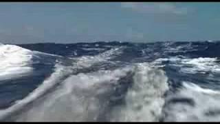 Morning Light (2008) - Official Trailer
