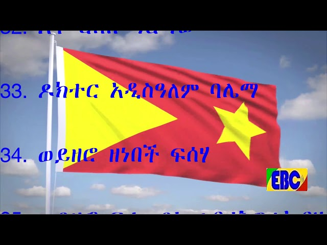 TPLF Re-Elects Dr Debretsion Gebremichael And Fetlework Gebregziabher As Chairperson And Deputy Chai