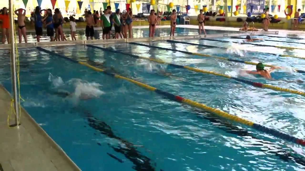 Javier pascual 100 mariposa piscina el plant o burgos for Piscinas el plantio burgos
