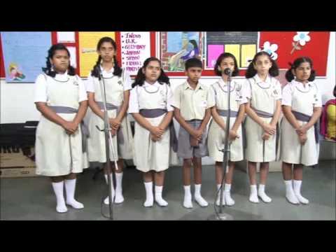 Nimbonichya Zadamage video