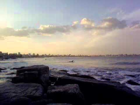 Mar Surf Surf en Mar Del Plata