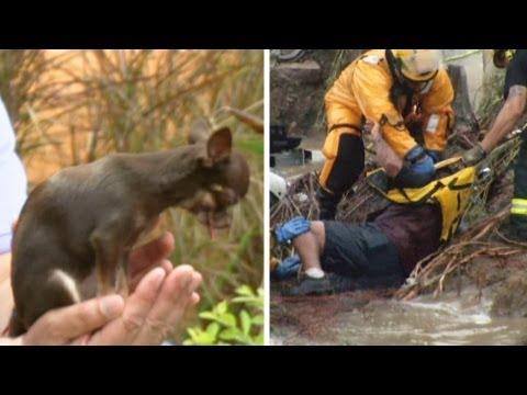 Imágenes de Impacto: Impresionantes rescates y records - Primer Impacto