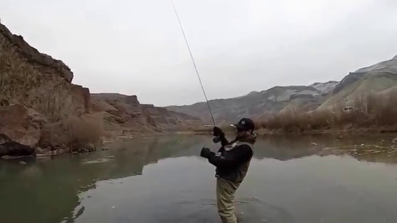 Owyhee river 2 12 16 fishing connect for Owyhee river fly fishing