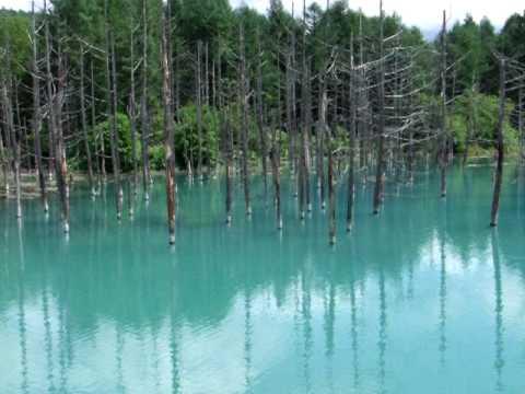 ★ 神秘の青い池 北海道白金温泉