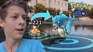 WP 221 Karpador (90% IV) entwickeln zu Garados • Pokemon Go deutsch