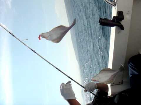 登別沖での 宗八釣り
