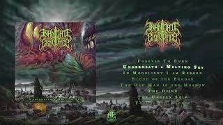 Download Lagu INANIMATE EXISTENCE - Underneath a Melting Sky [Full Album Stream] Gratis STAFABAND