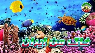 مستند فارسی - قاتلین بالفطره - صخره های مرجان