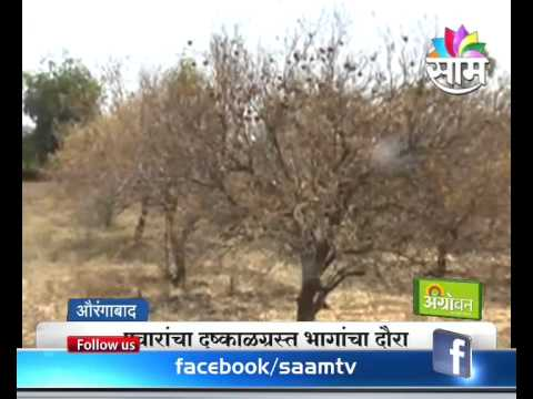 Sharad Pawar visits drought prone areas in Marathwada