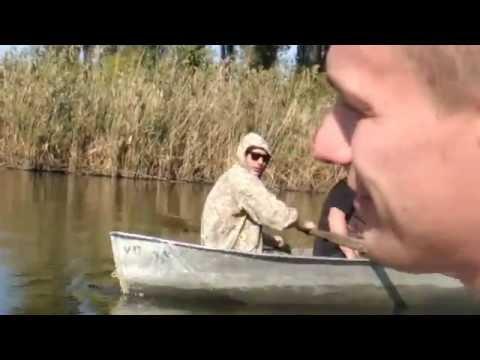 видео про ловлю толстолобика 2016