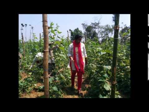 NRI girl returns to India, starts farming: Kranthi Paturi