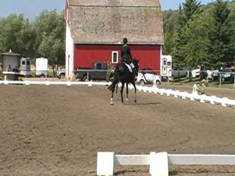 Irene Guenzel Riding R.D. Palfrey First Level. 66%