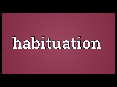 Header of Habituation