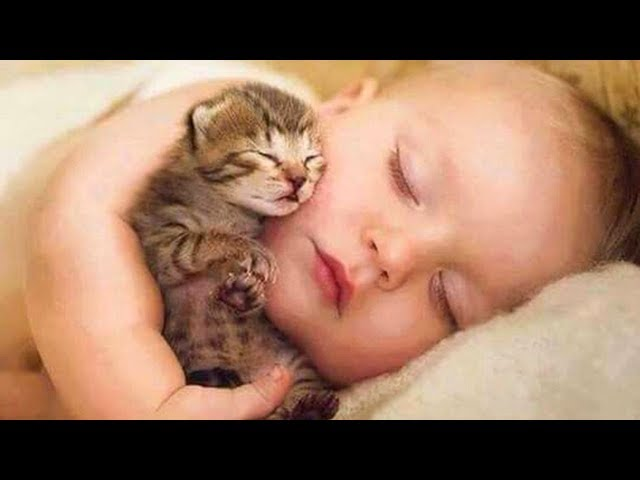 Cute Babies Snuggling Cats рр Funny Cat loves Baby Compilation