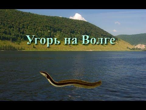 русская рыбалка 3.99 норвегия прикормка для рыбы