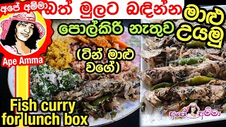 Fish recipe for lunchbox by Apé Amma