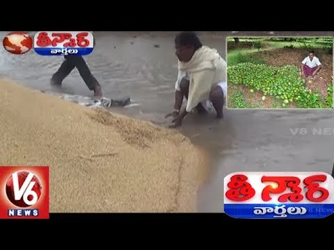Farmers In Concern As Heavy Rains Damages Crops | Teenmaar News | V6 News