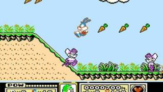 CGRundertow TINY TOONS ADVENTURES for NES Video Game Review