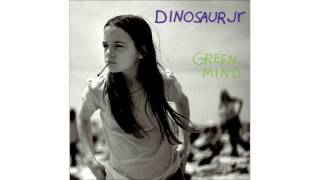 Watch Dinosaur Jr I Live For That Look video