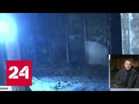 Первые кадры из сгоревшего ТЦ в Кемерово: от кинозалов не осталось ничего - Россия 24
