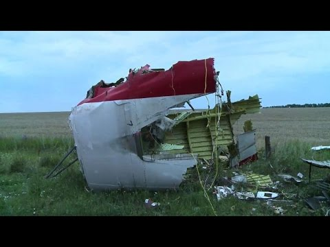 Ukraine leader says airline crash 'terrorist act'
