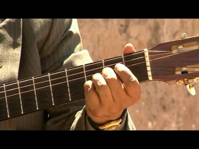 Guitarra Ayacuchana - Gentil Gaviota [HD] Huayno