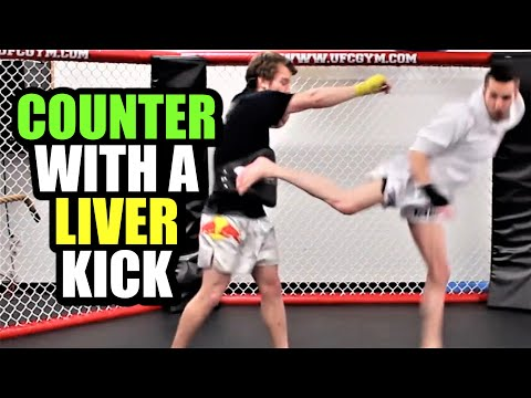 2 Ways To Counter The Jab Cross Combo | Kickboxing MMA TMA (Kwonkicker) Image 1