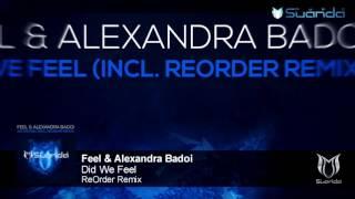 Feel & Alexandra Badoi - Did We Feel (ReOrder Remix)