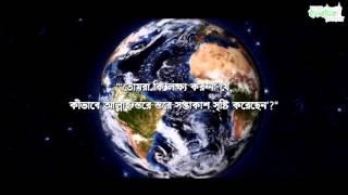 Surah Nooh | Muhammad Salah Nafea | Soothing Recitation  | Bangla Sub | Quran