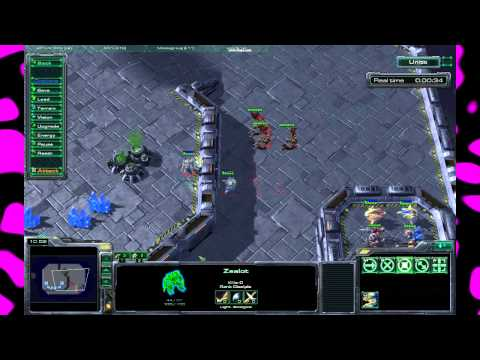 SC2 Mythbusters: Episode 19