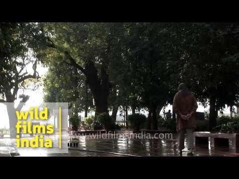 Mahatma Gandhi statue at Gandhi Sabarmati Ashram - Ahmedabad