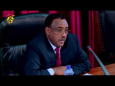 Oromia and Ethio-Somali Regional Coalition Submitting a Report to the Parliament